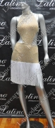 LATIN SALSA COMPETITION DRESS LDW (VL439)
