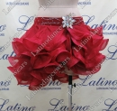 LATIN SALSA PRACTICE DRESS LDW (TL19)