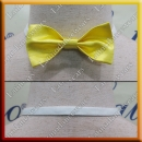 MAN LATIN SALSA BALLROOM BOW TIE (MC2D)