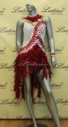 LATIN SALSA COMPETITION DRESS LDW (LS114) only on sale on latinodancewears.com