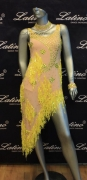 LATIN SALSA COMPETITION DRESS LDW (LS151) only on sale on latinodancewears.com