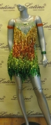 LATIN SALSA COMPETITION DRESS LDW (LS173) only on sale on latinodancewears.com