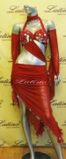 LATIN SALSA COMPETITION DRESS LDW (LS191A) only on sale on latinodancewears.com